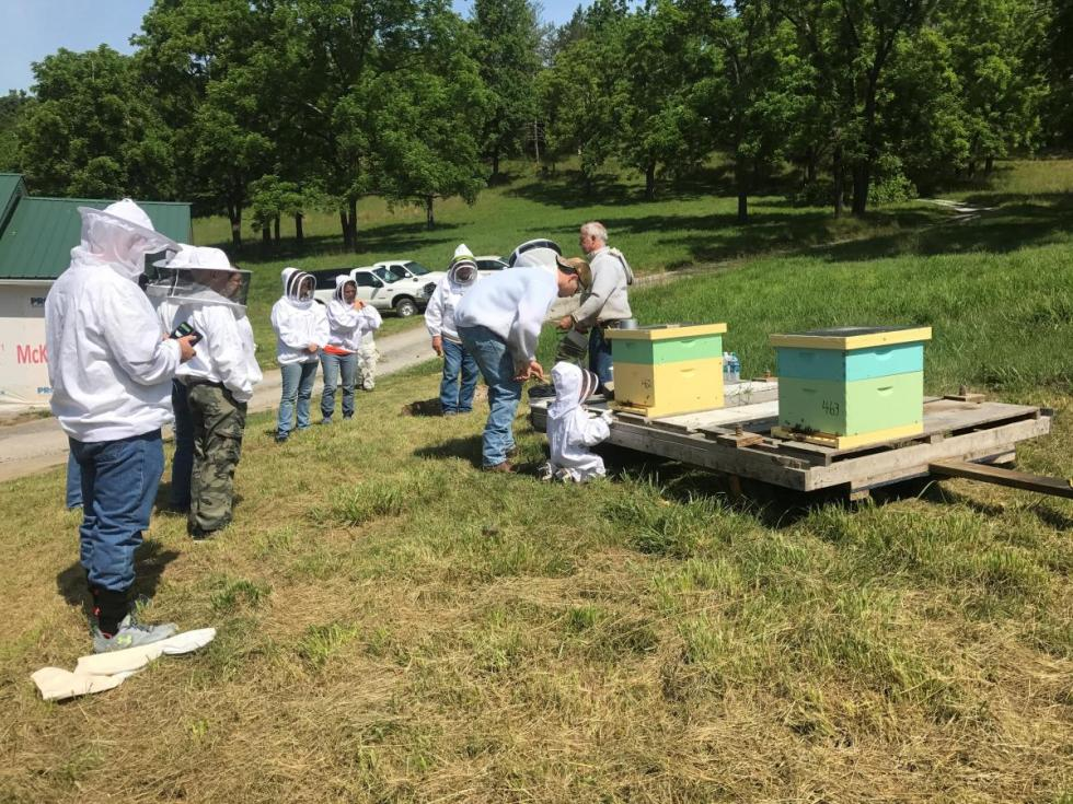 ABC Open Hive Demonstration Workshop 1