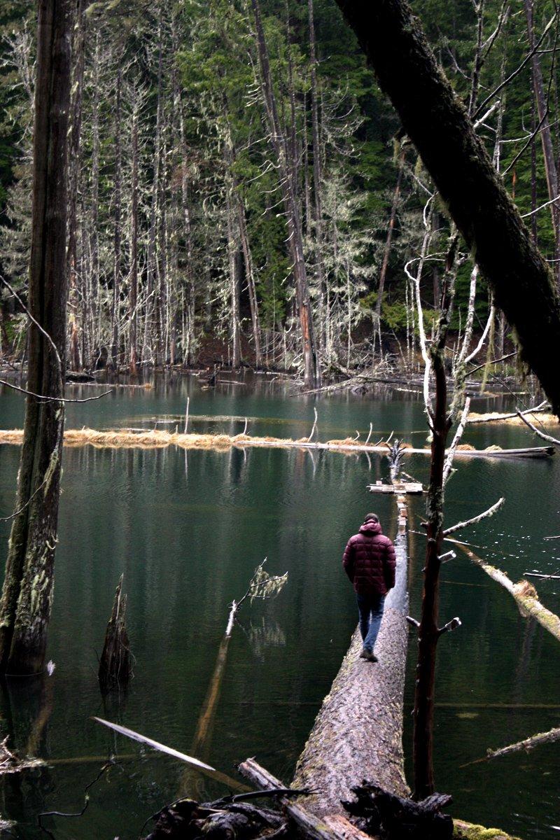 Tyler walking out on lake log