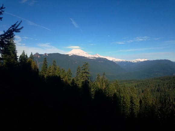 Mt. Rainier from Packwood Trail 2