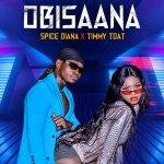 Obisaana Lyrics - Spice Diana Ft Timmy Tdat