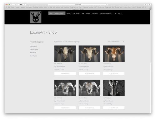 Website – www.loonyart.de