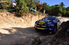321 Rally Itlaia Sardegna 2013 WRC Luca Pirina