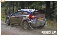 001-rally-gran-bretagna-wrc-2013
