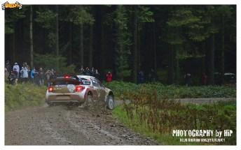 004-rally-gran-bretagna-wrc-2013