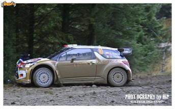 014-rally-gran-bretagna-wrc-2013
