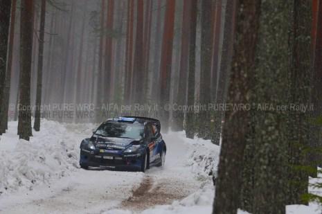 SVEZIA 2014 PURE WRC-34