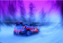 SVEZIA 2014 PURE WRC-36