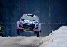 SVEZIA 2014 PURE WRC-43