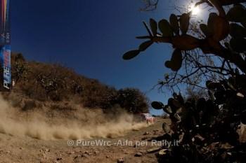 Wrc Messico 2014-8