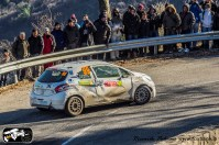 Montecarlo rally 2015_Palmero-24