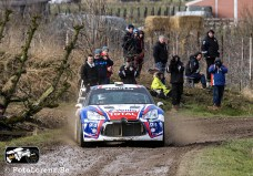 rally Haspengouw 2015-Lorenz-115