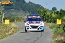 Adac Rally Germania 2015 244