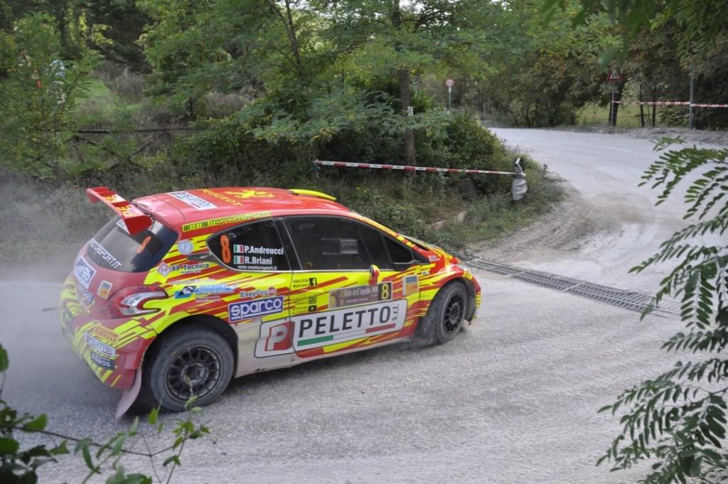 Paolo Andreucci e Rudy Briani - Rally Nido dell'Aquila - Peugeot 208 T16