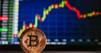 What Determines Cryptocurrency Future Price?