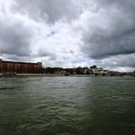 Teichauslauf am Rheinbord