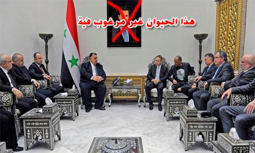 AfD-Delegation-Syrien1
