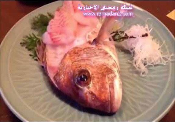 Fish-Zurck-nach-Leben