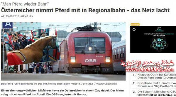 Pferd-In-Zug-2