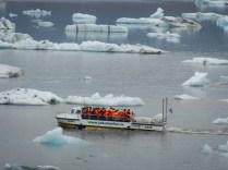 Iceberg and salamander at Jokulsarlon.