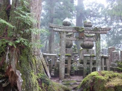 Torii in the Okunoin graveyard Koyosan.