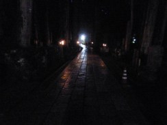 Night in the Koyasan graveyard.