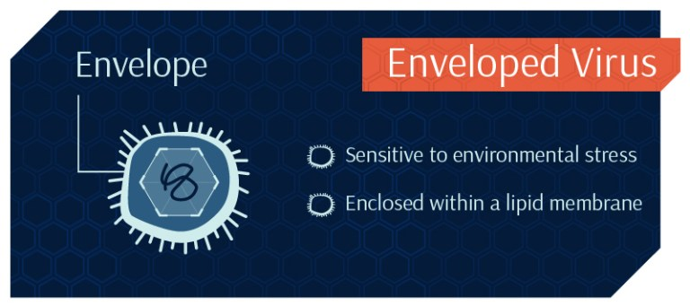 enveloped_virus-Stopping it from Getting Viral