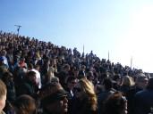 bevrijdingsfestival 2010 284