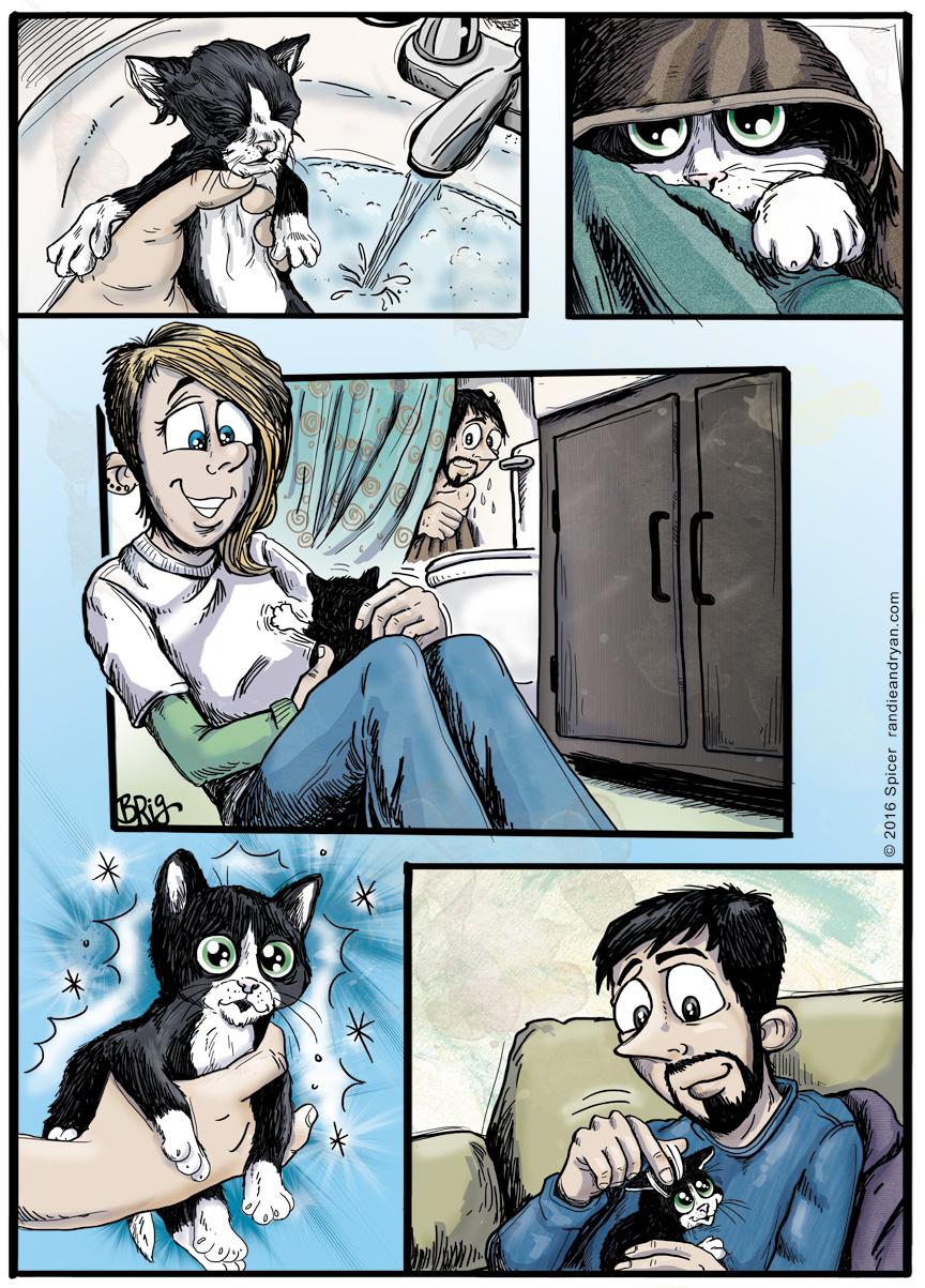 Scrub-a-dub Kitty