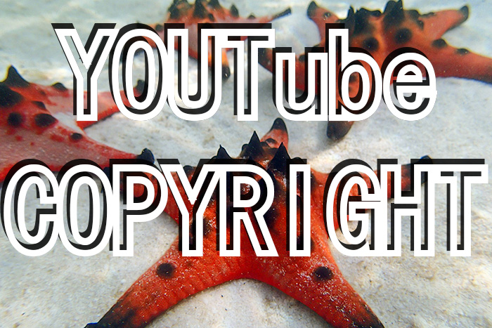 YouTube Copyright Counter Notice – What Now?