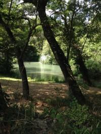 Cascade du Tombereau à Bras