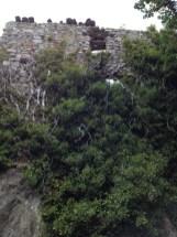 Ruines vieux Bras