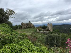 Rognes, le Foussa