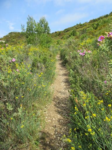 ** De la colline Sainte-Propice au domaine de Meynes et au ...