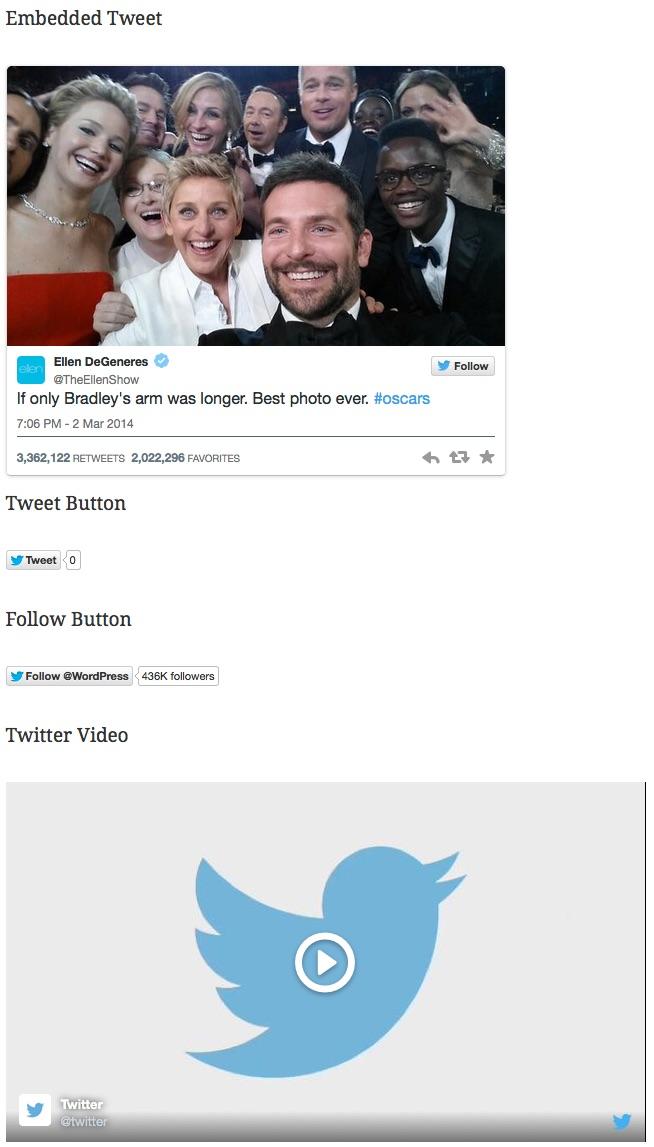 Das WordPress Plugin von Twitter (Bild: Twitter Plugin).