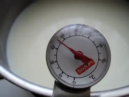 Termómetro a medir a temperatura do leite