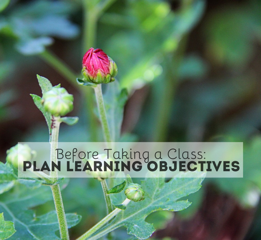 Plan Your Learning Objectives Before Taking a Class - www.randomolive.com