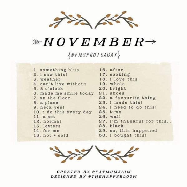 fms-photoaday-november
