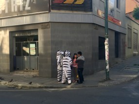 They use people dressed as zebras at zebra-crossings!