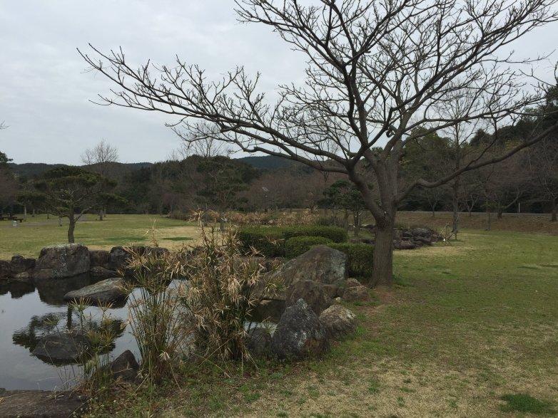 伊佐ノ浦公園キャンプサイト
