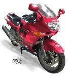 【ユーザー車検】ZZR600久しぶりに復活