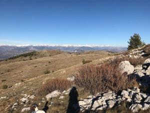 Cime du Cheiron au départ de Gréolières les neiges (18)