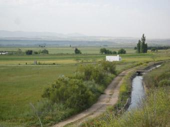 Vue sur la plaine agricole du Tage