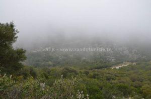 """Randonnée à Zaghouan : de Oued Dalia à """"damnèt Lanzasse"""" - Paysage"""