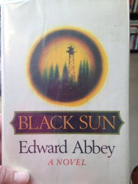 Black Sun (1st Edition 1971, Near Fine) fiction