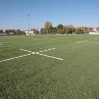 Rugby Arena Campo Sintetico