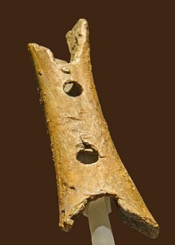 Oldest Musical Instrument - 43,000 years old