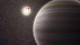 Quadruple Star System in 2012