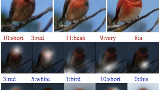 drawing bot creating birds