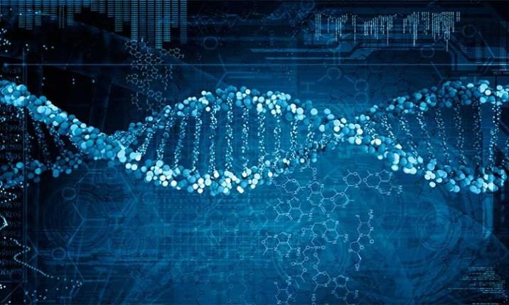 Genetic DNA Tool