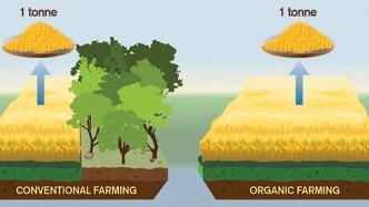 Organic Food Is Worse